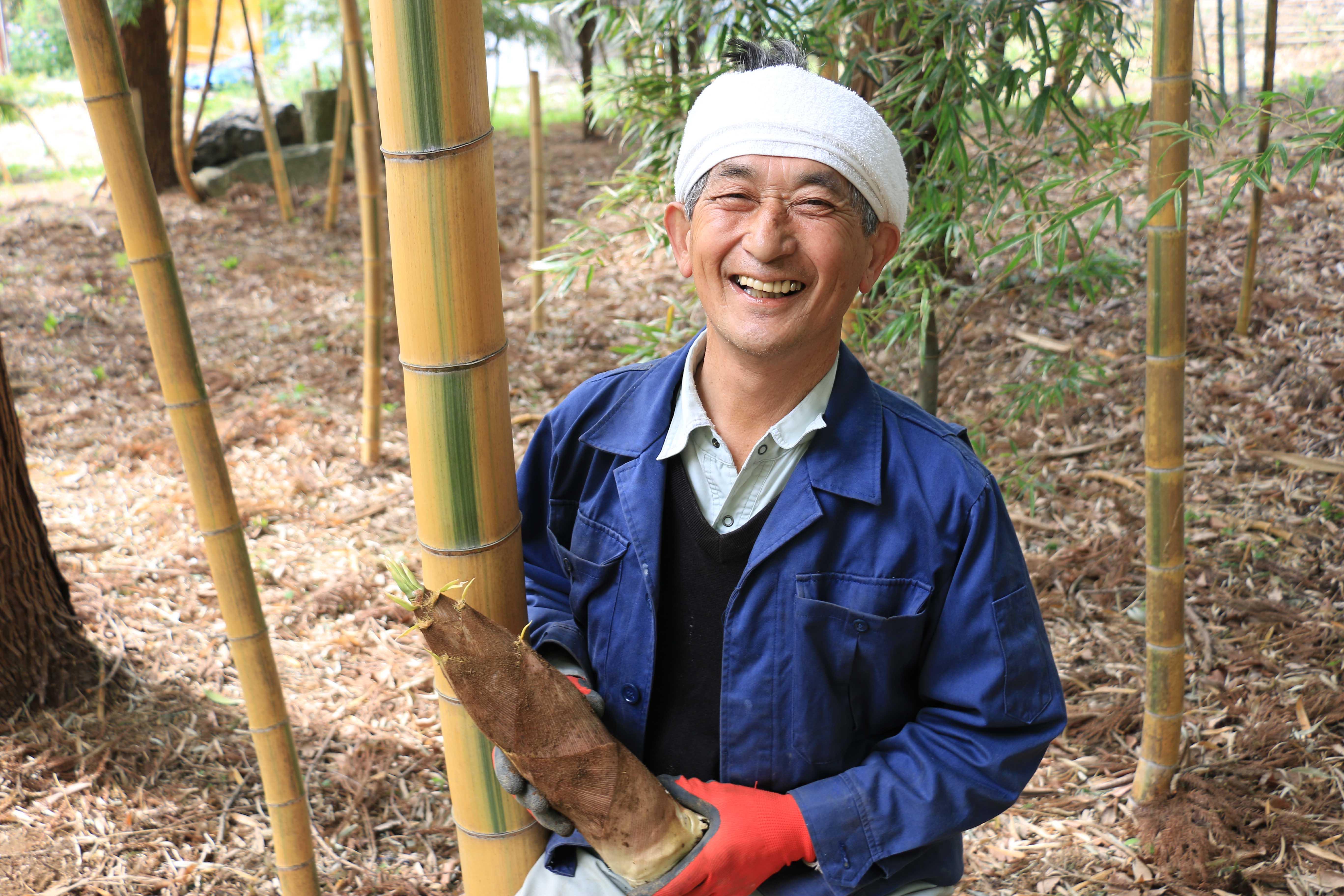 金明孟宗竹の筍が収穫真っ盛り(大門支店)
