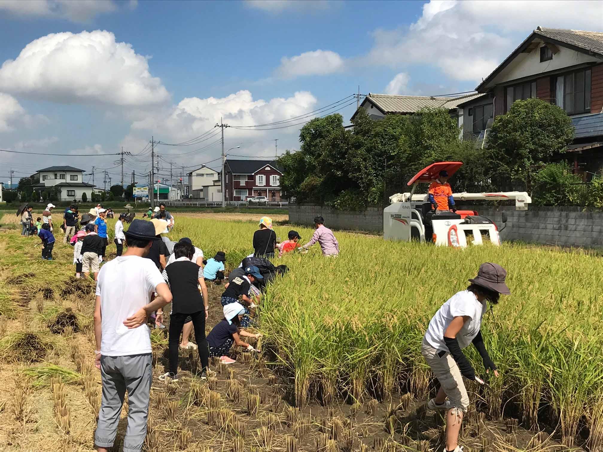 初開催!! お米作りを知ろう(馬宮支店:さいたま市)